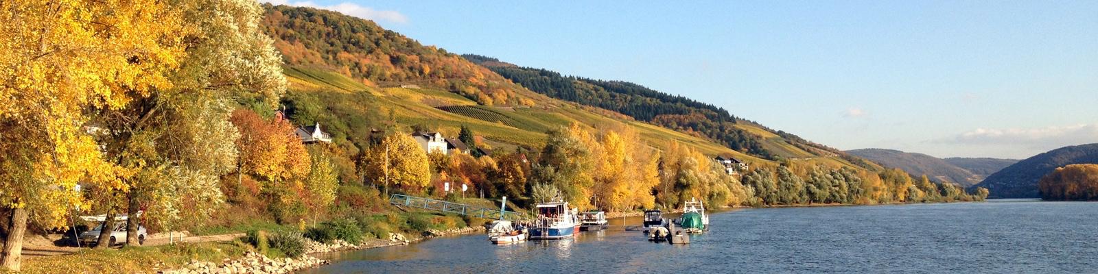 Lorch am Rhein, Richtung Südost